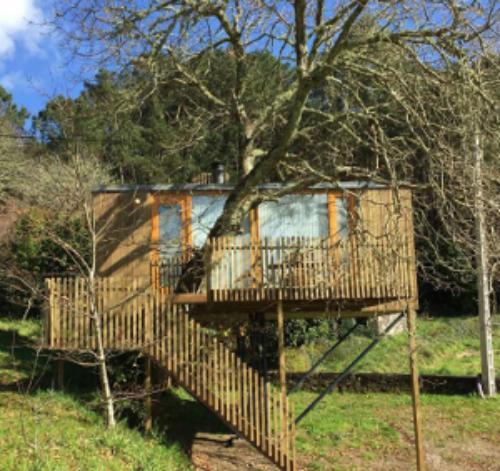 Alojamiento En Cabanas En Los Arboles Cabanitas Del Bosque - Cabaas-de-madera-en-arboles